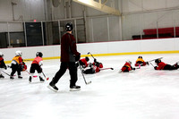 Skating with Blackhawks and Tommy Hawk (6)